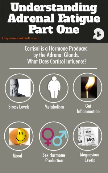 Understanding Adrenal Gland Fatigue is an important part of health