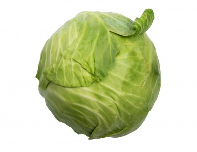 benefits of sauerkraut start with a cabbage