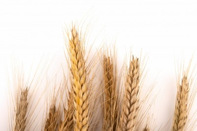 Getting a Celiac Diagnosis Can Be Difficult